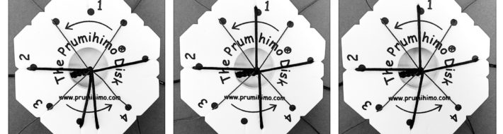 Prumihimo disks in action