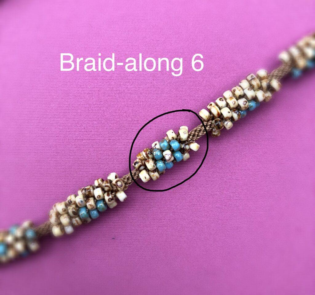 Braidalong6
